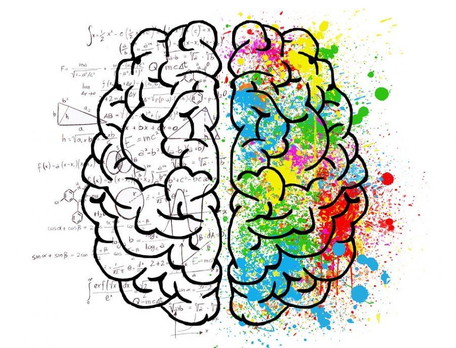 Left Brain, Right Brain: Ms. Resillez and Mrs. Bock