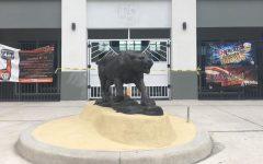 SAC's New Cougar Statue