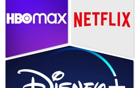 Will Netflix be able to fight off the younger networks? Can Disney maintain its crown? Will Home Box Office (HBO) fade away like Blockbuster and other forms of past entertainment?