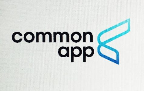 The Common Application is a platform used by over one million students.